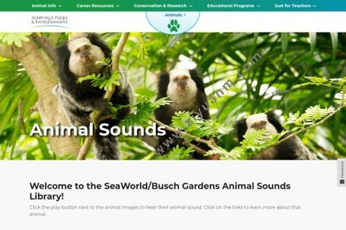 动物声音博物馆
