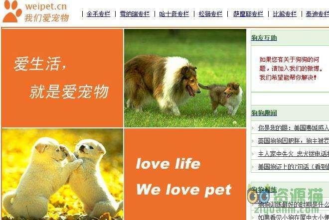 我们爱宠物网