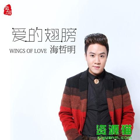 爱的翅膀lyric爱的翅膀
