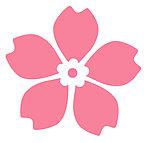 樱花卡盟logo图标