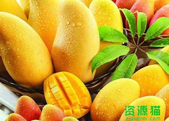 芒果的功效與作用禁忌