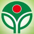春苗网logo图标