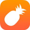 菠萝视频logo图标
