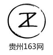 贵州163logo图标