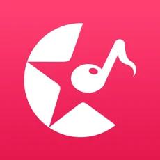 星途logo图标