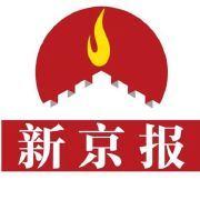 京报网logo图标